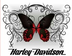 HARLEY DAVIDSON BUTTERFLY.  Repinned by An Angel's Touch, LLC, d/b/a WCF Commercial Green Cleaning Co., Denver's Property Cleaning Specialists!  http://angelsgreencleaning.net