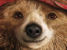 That's why I maybe got a bit too excited after seeing the trailer for the live action Paddington bear movie.