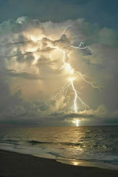 renamonkalou:SAM_7777Vero Beach ~ Florida