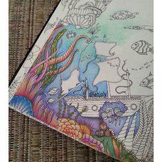 #oceanoperdidotop #oceanoperdido #lostocean #johanna_basford #johannabasford #coloringbook #Euamopintar #nossojardimsecreto #editorasextante #antiestresse #arteterapia #artecomoterapia #coloringtherapy #coloriage #lapisdecor #coloredpencils #staedtler #fabercastell #maped #marcoraffine #jardimsecretoinspire # # # #✏