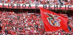 último jogo no Estádio da Luz, época 2013/2014 - Benfica 1 ( André Gomes), Vitória de Setúbal 1.