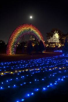Trail of Lights, Zilker Park. Austin