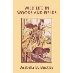 Wild Life in Woods and Fields by Arabella Buckley.  Natural History.
