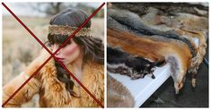 Fur Is Out – According To Burberry Fur Trade, Animal Fur, Animal Rescue Site, Next Fashion, Ethical Clothing, Interesting News, Strike A Pose, Humane Society, Good News