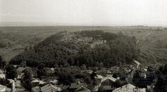 Suceava. Plasa Bosancea. Oraşul Suceava. Vedere spre cetate