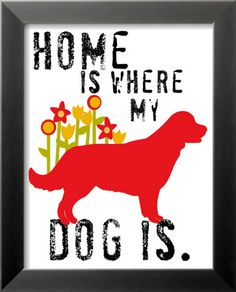 that is true..lost my dogs from foreclosure.. was able to get them back and have a home again.. they died of old age together with their family of dogs and humans.. I love and miss them
