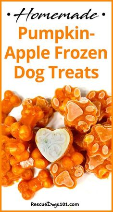 Pumpkin Dog Treats, Homemade Dog Treats, Healthy Dog Treats, Best Treats For Dogs, Dog Biscuit Recipes, Dog Treat Recipes, Dog Food Recipes, Food Dog, Best Dog Food