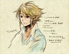 The Legend of Zelda: Twilight Princess AAAAAAAAAAAAH HIS HAIR!!!! It\'s so beautiful!