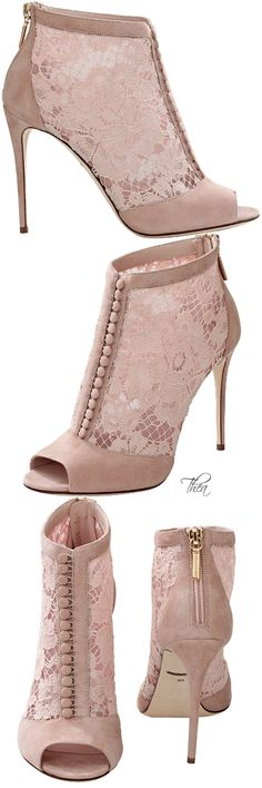 Dolce & Gabbana | shoes ( booties )Dorothy Johnson
