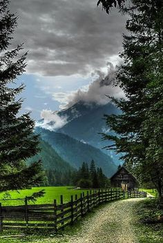 amazing nature scene