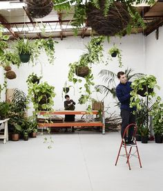 Loose Leaf — floral studio / plant store in Collingwood, Melbourne