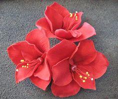 Jouluamaryllis on näyttävä kukka ja sopii sokerimassasta tehtynä myös kakun koristeeksi. Aito kukka on lievästi myrkyllinen, joten elävää ku...