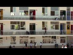 ▶ Profes: un película de Elige Educar   HD - YouTube. La película Profes dirigida por Sebastián Moreno (La Ciudad de los Fotógrafos) y producida por Ricardo Larraín (La Frontera, El Entusiasmo, Pasos de Baile), aborda las historias de 6 maestros de diferentes disciplinas, insertos en variados entornos sociales y repartidos en diferentes puntos