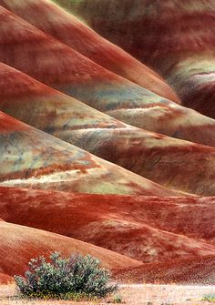 Photograph of the Painted Hills, Oregon