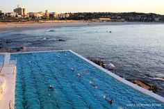 Swimming at the Icebergs by Morning Bondi