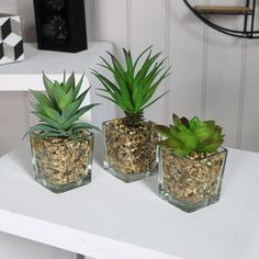 Set of Artificial Plants in Glass Jars Home Gift Decoration Accessories Wedding Fake Plants, Artificial Plants, Potted Plants, Plant Pots, House Plants Decor, Plant Decor, Glass Jars, Candle Jars, Mason Jars