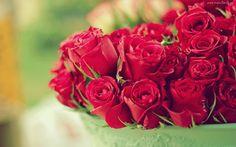 Kwiaty, Bukiet, Róż