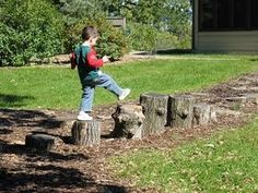 Creating Natural Playscapes