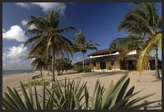 Kizingoni Beach Experience Kizingoni Beach, Lamu is famous for its stunning beaches, quiet and private rooms, perfect views and delicious seafood. Both the Kizingoni houses and the kabanas have availability over the Christmas and New Year period.  There are three flights daily from Nairobi to Lamu Airport. Resident offer! contact  info@riverpaktravel.co.ke reservations@riverpaktravel.co.ke