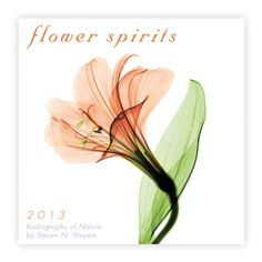 Flower Spirits 2013 Mini (calendar)