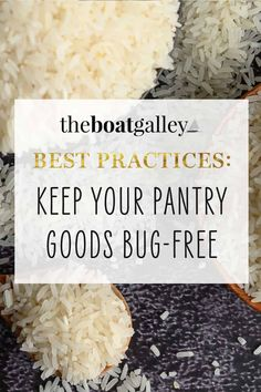 Use these tips to AVOID critters in your stored food on your boat or RV-- bugs, ants, weevils and cockroaches -- instead of dealing with an infestation. #RVlife #RVliving #liveaboard #boatlife Cooking Tools, Cooking Recipes, Living On A Boat, Foods To Avoid, Food Humor, Types Of Food, Ants, Food Storage, Food To Make