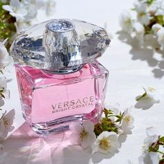 Perfumes Versace, Versace Perfume, Perfume Good Girl, Best Perfume, Perfume Sale, Perfume Bottles, Perfume Glamour, Perfume Lady Million, Perfume Collection