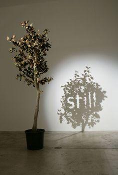 """""""Still"""" (2005), by Fred Eerdekens. Shadow art."""