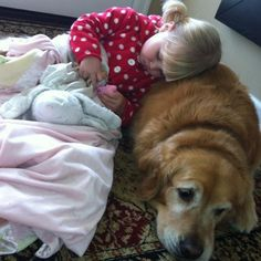 Why we love dogs http://funnyfanatics.com