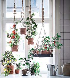 Meer dan 1000 idee n over hangplanten op pinterest plantenbakken ophangen plantenstandaard en - Deco hangende toilet ...