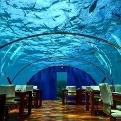 Ithaa Undersea Restaurant on Rangali Island, the Maldives.