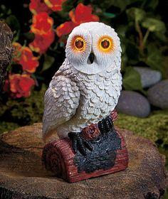 White Solar Lighted Hooting Owl Sound & Light Functions By Motion Sensor Garden