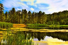 """the amazing """"Silver Lake"""", Cloudcroft New Mexico."""