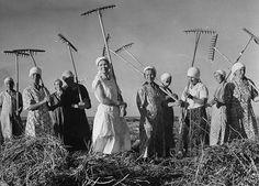 Mulheres durante colheita de feno em fazenda coletiva no interior da antiga União Soviética – 1941. (Margaret Bourke-White/Time & Life Pictures/Getty Images)