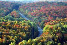Fall Colors at Algonquin Park and Oxtongue Lake