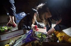 Freegans. Ben Nelms / Reuters. May Wollf (center) and Robin Pickell (right) sort through food they plucked out of a dumpster behind an organic grocery store in Coquitlam, British Columbia on Thursday night.