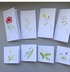Hand painted floral greetings cards by Crafts at Fox Cottage