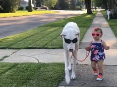 Almost overnight the internet has fallen in love with these two gorgeous girls! 18-month-old Jennie and her Great Dane Echo just walked into internet fame – and stylishly, in sunglasses! Like any happy mom, Marion Dwyer took to sharing photos of …
