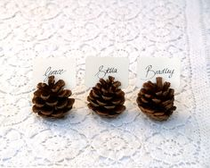 Pine Cone Place Cards- Megs, these seem a little boring, but we could spray them with glitter to add some flare!