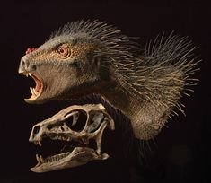 Pegomastax africanus.  With a short, parrot-like beak and tall teeth that act like self-sharpening scissors, puny Pegomastax africanus was one of the most advanced plant-eaters of its day. Smaller than a house cat, this little beast was likely covered with bristles like those of a porcupine.