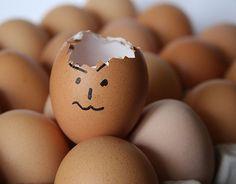 broken egg, egg design, brown eggs, collection of eggs