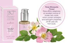 is the World's Most Popular, Expensive, & Luxurious Natural Skin Care Brand. We provide High Quality Herbal, Organic, Luxury & High Performance Natural Cosmetic products worldwide. Face Lotion, Natural Cosmetics, Natural Skin Care, Herbalism, Beauty Products, Vanilla, Perfume Bottles, Skincare, Rose