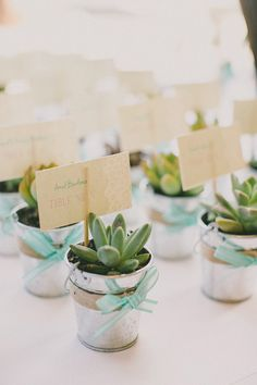 mint + succulents... adorable favors! http://nashville.wedding101.net/