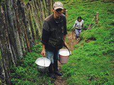"""В Колумбийских деревнях и на финках в горах нас редко спрашивали о национальности и нигде не называли гринго... С нами разговаривали совершенно обычно как с обычными людьми:) отсутствие интереса о национальности нас порой так смущало по непривычке что мы сами выкладывали через десять минут """"а мы русские из России"""":) """"О! Это так далеко! Вы собираетесь возвращаться?"""" :) #Colombia #Tolima"""