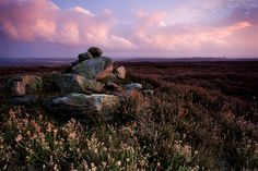 The Yorkshire Moors. Called Bronte County in honor of the great author sisters. If you listen carefully, you can hear Heathcliff. I swear it...