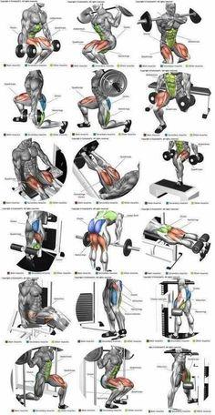 Perna ( quadríceps, bíceps femural, adutor e abdutor) (Fitness Workouts Abs) Fitness Man, Muscle Fitness, Health Fitness, Planet Fitness, Muscle Nutrition, Fitness Workouts, Fitness Tips, Body Workouts, Biceps Workout
