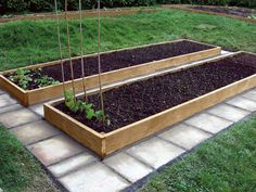 raised bed gardening ideas | ... money. The average-size vegetable bed order is two 12 by 4 ft beds