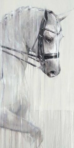 "Charlotte Dujardin ""Ride like Charlotte"" Canvas print - Horse paintings & equestrian art by equine artist Vanessa Whittell Charlotte Dujardin, Cute 13 Year Old Boys, Lions Photos, Complete Image, Visual Cue, Equestrian Decor, Thing 1, Horse Drawings, Types Of Painting"