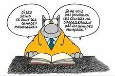 le chat de Geluck 9309d4de314d3a52a2697391e965cd07--humour-comics