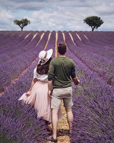 "Gefällt 862 Mal, 51 Kommentare - Alexandra Esina (@miss.sjo) auf Instagram: ""Lavender is in the air. . . Аромат лаванды бьет в нос, громкое жужжание пчёл настораживает, а…"""