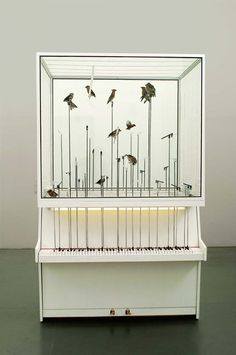 Dollar Note is an incredible installation by Robert Gligorov, which features a bird cage full of canaries, mounted on two vertical pianos positioned back to back. As the canaries fly from perch to … Sound Installation, Sound Art, Playing Piano, Art Plastique, Bird Cage, Sculpture Art, Sound Sculpture, Contemporary Art, The Incredibles